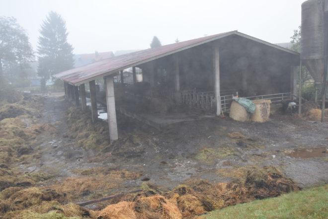 Innerhalb einer Minute stand der Stall in Flammen