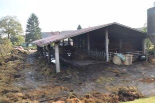 Untersuchungen ergaben Hinweise auf Brandstiftung
