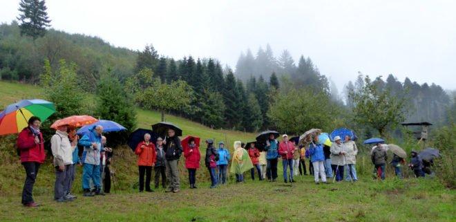 Weinwanderung des Zeller Schwarzwaldvereins