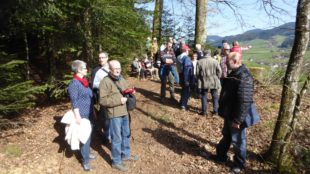 Mit dem Schwarzwaldverein Zell dem Frühling auf der Spur