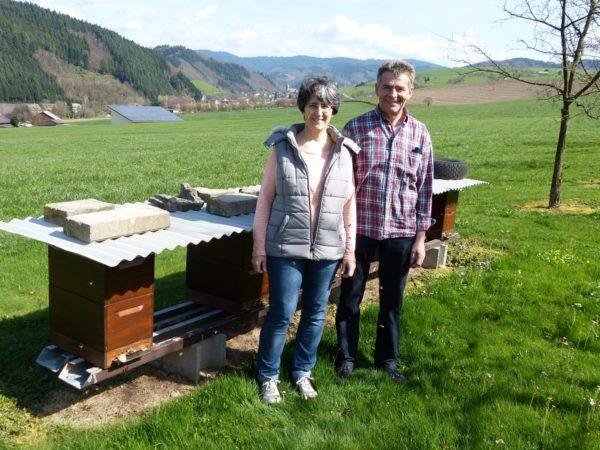 Bienen anstelle von Kühen und Schweinen