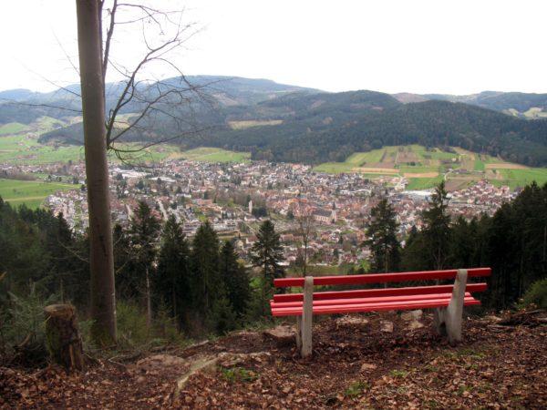 Neue Bank mit Weitblick macht Badwald für Wanderer attraktiv