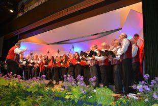 Die Badewannen-Singers – seit 10 Jahren eine gute Zeit