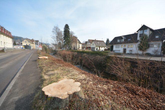 Kastanienbäume gefällt und ein weiteres Haus abgerissen