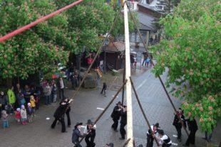 Maibaumaufstellen mit Blasmusik und Dorf-Hock am Rathausplatz