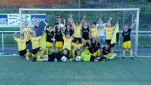 ZFV E-Junioren werden Meister