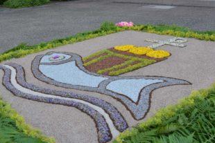 Altäre, Blumenteppiche und Prozession zu Fronleichnam