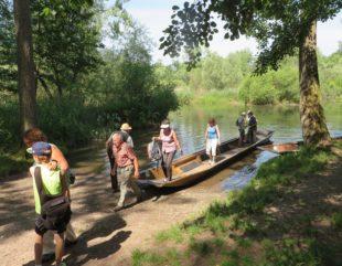 Schwarzwaldverein durchquert mit  dem Boot und zu Fuß das Taubergießen