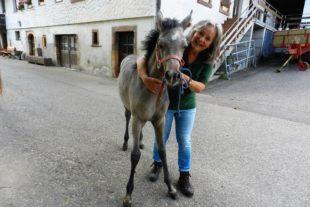 Am Montag im SWR: »Die Fohlenmutter – Nachtwache bei den Araberpferden«