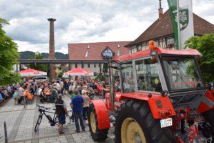 Sommerfest des MGV »Liederkranz«