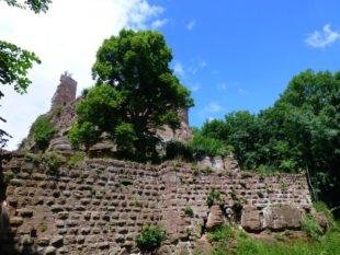 Wanderung zur größten Burganlage im Elsass