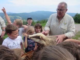 Exkursion ins Reich der Tiere