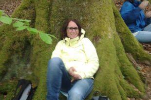 Faszination Bäume: Begegnung mit der Natur