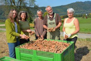 Landwirtschaft bietet frische Produkte aus der Region