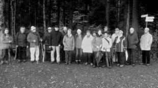 Schwarzwaldverein entdeckte bei Abschlusstour den »Zauberwald«