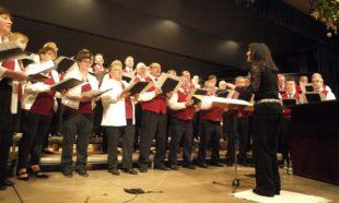 Gesangverein Frohsinn schenkte Zuhörern einen Strauß bunter Melodien