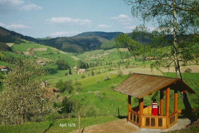 Schwarzwaldverein Zell a. H.: Sternwanderung zum Haldeneck