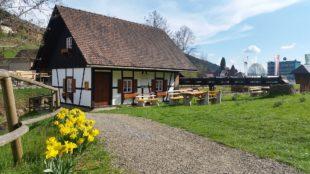 Deutscher Mühlentag: Maile-Gießler-Mühle in Nordrach geöffnet