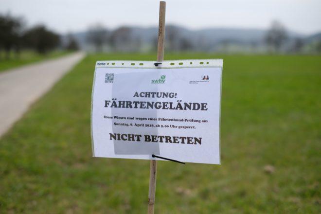 Kreisgruppen-Meisterschaft beim HSV Biberach/Zell