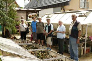 Ausflug mit dem Zug zur Kakteenschau von Hans Palmer nach Biberach
