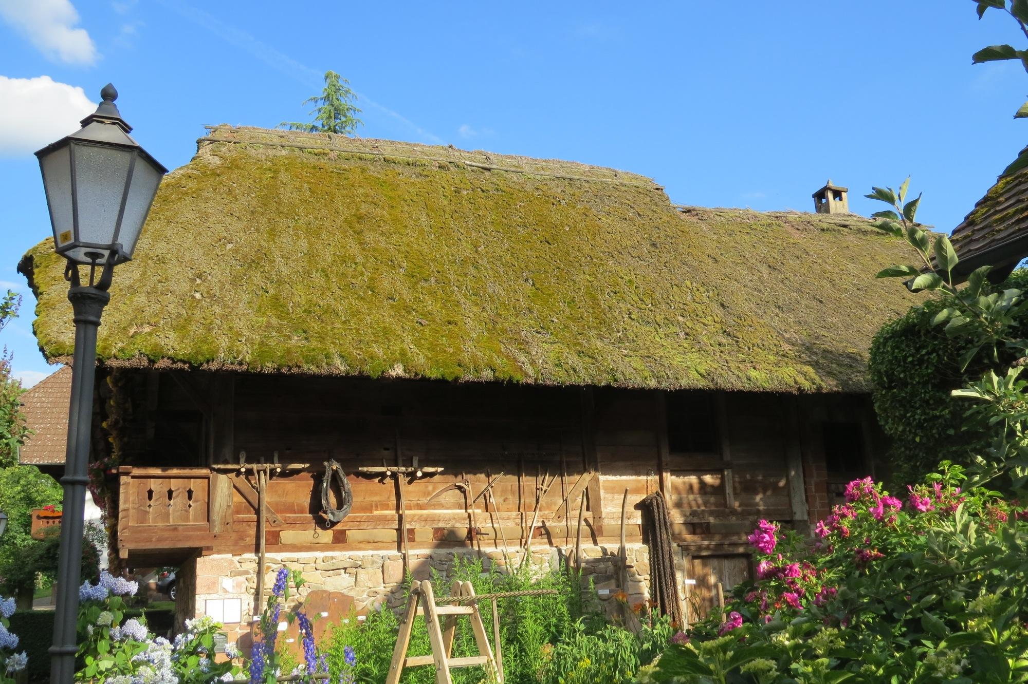 Malerisch Reetdach Kosten Foto Von Historischer Speicher Wird Komplett Mit Ziegeln Eingedeckt