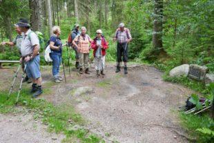 Rundwanderung im blühenden Rohrhardsberggebiet