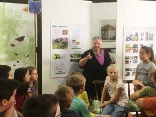Zeller Schüler entdecken Schmetterlingsausstellung im Storchenturm