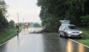 Kreisstraße nach Gewittersturm blockiert