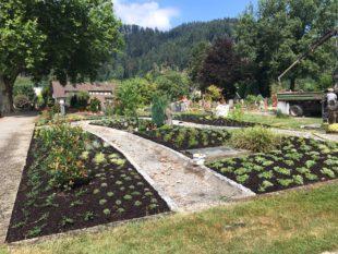 Drittes gärtnergepflegtes Grabfeld auf dem Friedhof ist fertiggestellt