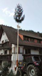 Trachtenkapelle stellte Maien für Jonathan Schmieder
