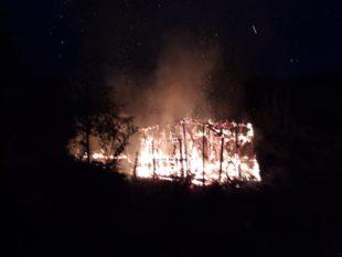 Schuppen wurde Raub der Flammen