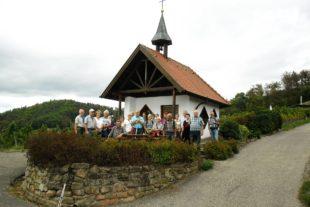 Herbstliche Wanderung  auf dem Ortenauer Weinpfad