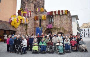 Senioren besuchten die Chrysanthema in Lahr