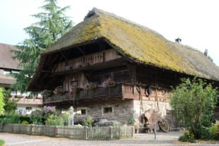 Gallus-Säge Oberharmersbach: Schauvorführung und Führungen im Museumsareal