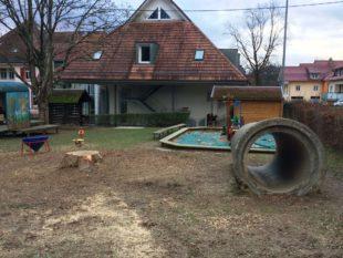 Leserzuschrift: Baumfällung in Unterentersbach