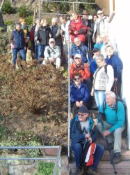 Große Wandergruppe bei Bilderbuchwetter gemeinsam unterwegs