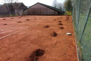 Maulwurf-Invasion auf dem Tennisplatz Spielbetrieb kommt vorerst zum Erliegen – Tennisspieler treffen sich zur Sondersitzung