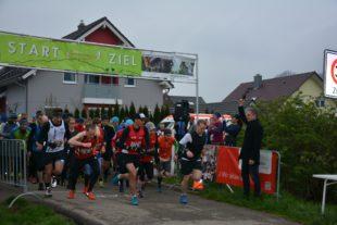 355 Läuferinnen und Läufer trotzten der Kälte