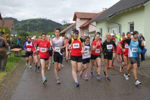 49. Biberacher Straßenlauf mit Nordic Walking hat gutes Ergebnis