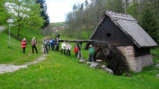 Alpenverein genoss Höhenluft in einem der schönsten Schwarzwaldtäler