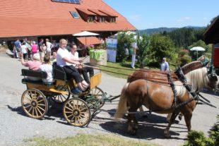 Schwarzwälder Naturparke laden zum Brunch auf dem Bauernhof