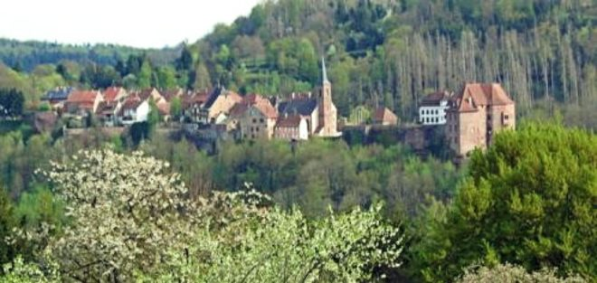 Schwarzwaldverein Zell a. H.: Rundwanderung im Naturpark Nordelsass
