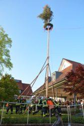 Maibaumstellen im Entersbach wurde zu einem zweitägigen Dorffest
