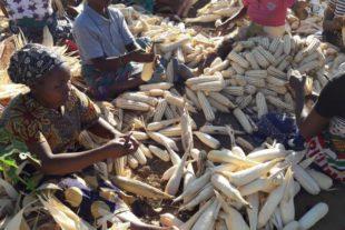 »Luta« und Solidarität nach Sturm und Unwettern in Mosambik