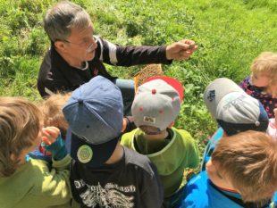 Kindergartenkinder zu Besuch bei den Bienen