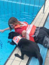 DRK-Hundestaffel Offenburg übte im Waldterrassenbad den Notfall