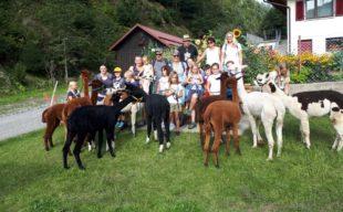 Wieder unterwegs mit den wolligen Wiederkäuern von Familie Neumayer