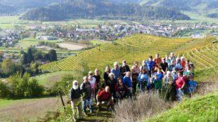 Spezialitätenwanderung des Alpenvereins bei sommerlichen Temperaturen