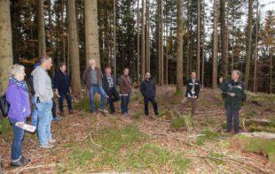 Gemeindewald für die Zukunft gerüstet