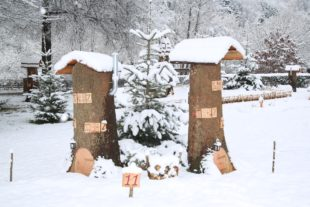 Weihnachtsmarkt mit Adventsdorf
